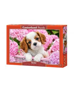 Puzzle pies piesek szczeniak Blenheim Castorland 500 el. - zdjęcie 1
