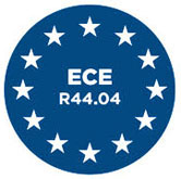 Homologacja ACE R44/04