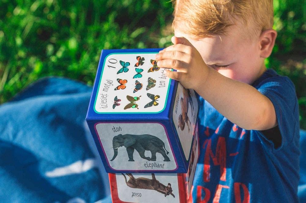 Piramida zabaw zwierzęta kartonowe klocki
